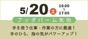 5/20土 10:00〜17:00 ブッダパーム気候 手を使う仕事・作業の方に最適!手のひら・指の気がパワーアップ!